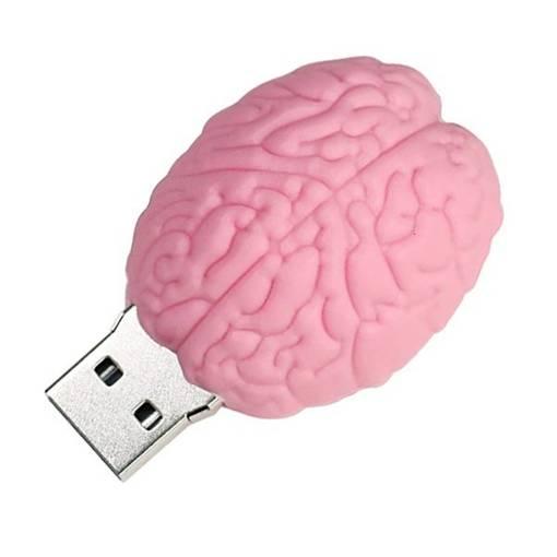 PENDRIVE MÓZG Róż Operacja Rozum Głowa USB 16GB